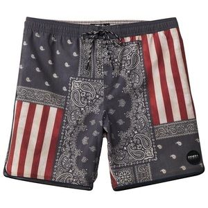 O'Neill Men's Patch Volley Flag Cruzer Boardshort